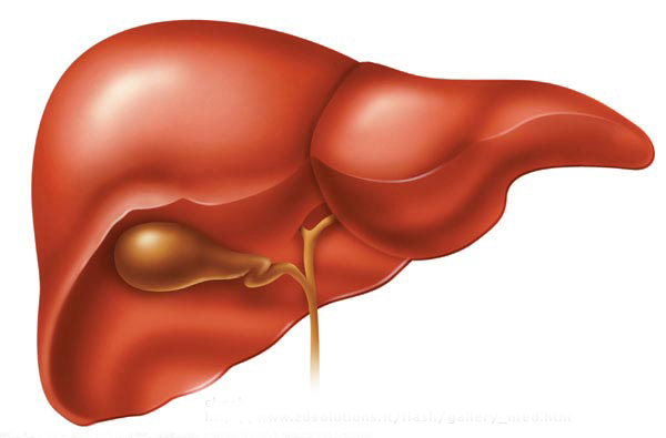 Love Your Liver with These Detox Tips