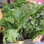 kale from my local farmers' market