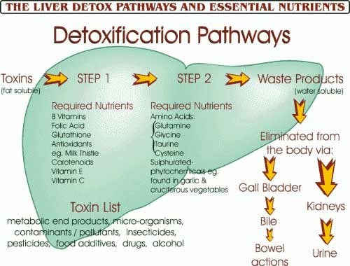 10 Ways To Detox Daily Mary Vance Nc
