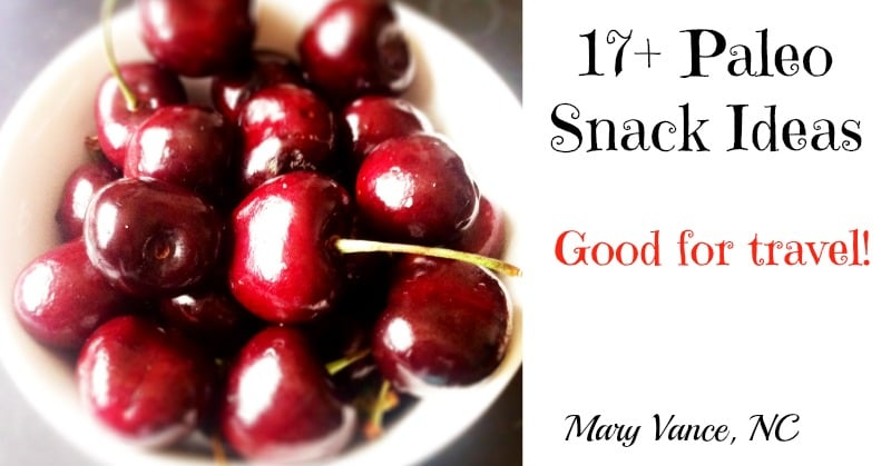 17+ Paleo Snack Recipes and Ideas