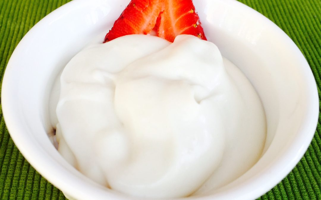 EASY Recipe: How to Make Homemade Coconut Milk Yogurt