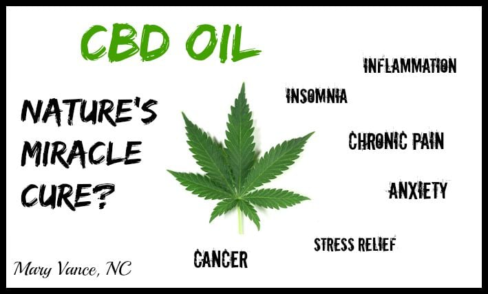 Image result for Hemp Oil Uses & Benefits