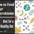 How to Feed Your Microbiome: Diet for a Healthy Gut--Mary Vance, NC