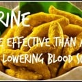 Berberine: More Effective than a Drug?--Mary Vance, NC