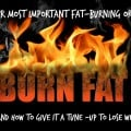 Your Most Important Fat Burning Organ--Mary Vance, NC