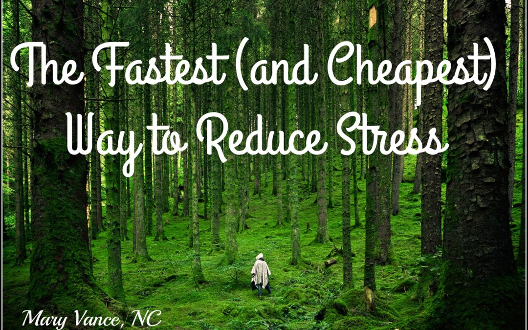 The Fastest Way to Reduce Stress