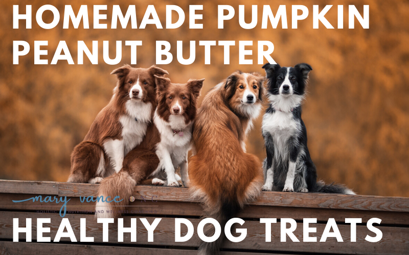 Pumpkin Peanut Butter Homemade Dog Treats (Gluten Free)